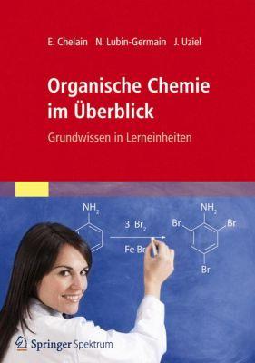 Organische Chemie im Überblick, Evelyne Chelain, Nadège Lubin-Germain, Jacques Uziel