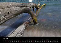 Ostsee-an-Sichten (Wandkalender 2018 DIN A4 quer) - Produktdetailbild 6