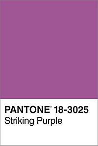 Pantone. Farbe in Kunst und Leben - Produktdetailbild 1