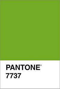Pantone. Farbe in Kunst und Leben - Produktdetailbild 5