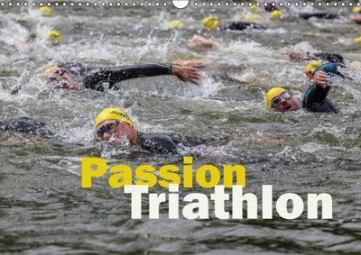 Passion Triathlon (Wandkalender 2018 DIN A3 quer), Hans Will