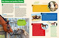 Pferde und Ponys - Produktdetailbild 4