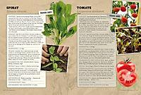 Pflanzensamen - Produktdetailbild 2