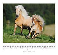 Ponys 2018 - Produktdetailbild 5