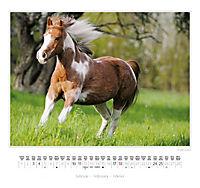 Ponys 2018 - Produktdetailbild 9