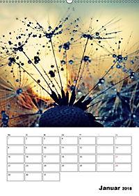Pusteblumentraum - Dreams of Dandelion (Wandkalender 2018 DIN A2 hoch) - Produktdetailbild 1