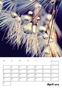 Pusteblumentraum - Dreams of Dandelion (Wandkalender 2018 DIN A2 hoch) - Produktdetailbild 4