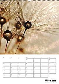 Pusteblumentraum - Dreams of Dandelion (Wandkalender 2018 DIN A2 hoch) - Produktdetailbild 3