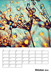 Pusteblumentraum - Dreams of Dandelion (Wandkalender 2018 DIN A2 hoch) - Produktdetailbild 10
