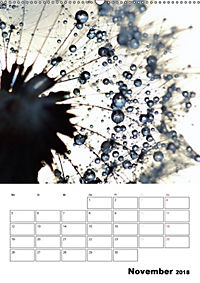 Pusteblumentraum - Dreams of Dandelion (Wandkalender 2018 DIN A2 hoch) - Produktdetailbild 11