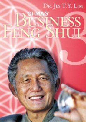 Qi-Mag Business Feng Shui Iii (Inkl.Handbuch), Jes T. Y. Lim