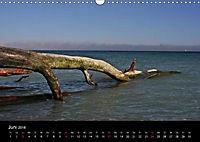 Rügen (Wandkalender 2018 DIN A3 quer) - Produktdetailbild 6