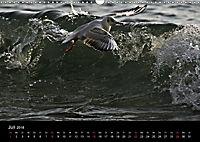 Rügen (Wandkalender 2018 DIN A3 quer) - Produktdetailbild 7