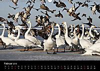 Rügen (Wandkalender 2018 DIN A3 quer) - Produktdetailbild 2
