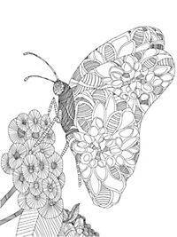 Schmetterling im Muschelwald - Produktdetailbild 1