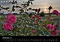 Schottische Impressionen (Tischkalender 2018 DIN A5 quer) - Produktdetailbild 12