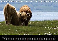 Schottland 2018 (Tischkalender 2018 DIN A5 quer) - Produktdetailbild 7