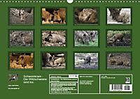 Schweinkram - Die Wildschweine sind los (Wandkalender 2018 DIN A3 quer) - Produktdetailbild 13