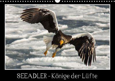 Seeadler - Könige der Lüfte (Wandkalender 2018 DIN A3 quer), Thomas Schwarz, Thomas                        10000219418 Schwarz