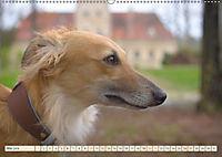 Silken Windsprite - Schöne Schlösser und edle Windhunde (Wandkalender 2018 DIN A2 quer) - Produktdetailbild 5
