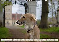 Silken Windsprite - Schöne Schlösser und edle Windhunde (Wandkalender 2018 DIN A2 quer) - Produktdetailbild 6