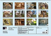 Silken Windsprite - Schöne Schlösser und edle Windhunde (Wandkalender 2018 DIN A2 quer) - Produktdetailbild 13