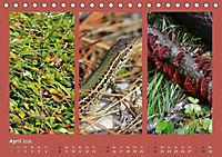 Slowenien - Triglav, Karst und Adria (Tischkalender 2018 DIN A5 quer) - Produktdetailbild 4