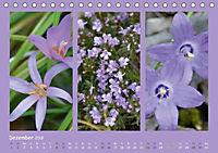 Slowenien - Triglav, Karst und Adria (Tischkalender 2018 DIN A5 quer) - Produktdetailbild 12