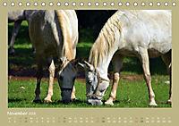 Slowenien - Triglav, Karst und Adria (Tischkalender 2018 DIN A5 quer) - Produktdetailbild 11
