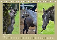 Slowenien - Triglav, Karst und Adria (Tischkalender 2018 DIN A5 quer) - Produktdetailbild 8