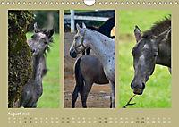 Slowenien - Triglav, Karst und Adria (Wandkalender 2018 DIN A4 quer) - Produktdetailbild 7