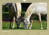 Slowenien - Triglav, Karst und Adria (Wandkalender 2018 DIN A4 quer) - Produktdetailbild 10