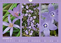 Slowenien - Triglav, Karst und Adria (Wandkalender 2018 DIN A4 quer) - Produktdetailbild 2