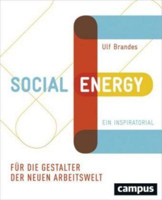 Social Energy, Ulf Brandes