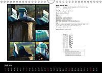 Sockenkalender Bootsocks 2018 (Wandkalender 2018 DIN A4 quer) - Produktdetailbild 7