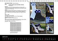 Sockenkalender Bootsocks 2018 (Wandkalender 2018 DIN A4 quer) - Produktdetailbild 6