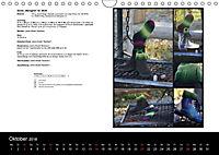 Sockenkalender Bootsocks 2018 (Wandkalender 2018 DIN A4 quer) - Produktdetailbild 10