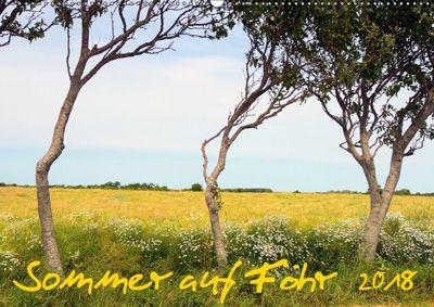 Sommer auf Föhr (Wandkalender 2018 DIN A2 quer), Jürgen Bergenthal