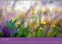 Sommer auf Föhr (Wandkalender 2018 DIN A2 quer) - Produktdetailbild 5