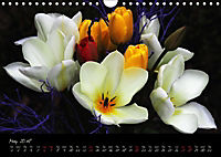 Soul-Jazz Visual Music of Flowers (Wall Calendar 2018 DIN A4 Landscape) - Produktdetailbild 5