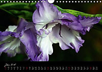 Soul-Jazz Visual Music of Flowers (Wall Calendar 2018 DIN A4 Landscape) - Produktdetailbild 7