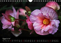 Soul-Jazz Visual Music of Flowers (Wall Calendar 2018 DIN A4 Landscape) - Produktdetailbild 8