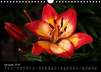 Soul-Jazz Visual Music of Flowers (Wall Calendar 2018 DIN A4 Landscape) - Produktdetailbild 11