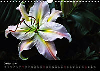 Soul-Jazz Visual Music of Flowers (Wall Calendar 2018 DIN A4 Landscape) - Produktdetailbild 10