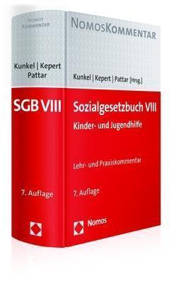 Sozialgesetzbuch (SGB) VIII, Lehr- und Praxiskommentar