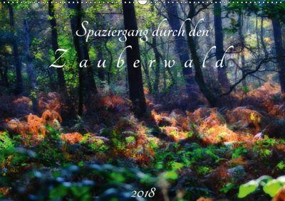 Spaziergang durch den Zauberwald (Wandkalender 2018 DIN A2 quer), Peter Hebgen