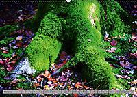 Spaziergang durch den Zauberwald (Wandkalender 2018 DIN A2 quer) - Produktdetailbild 5