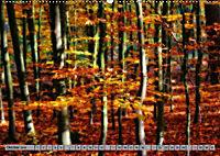 Spaziergang durch den Zauberwald (Wandkalender 2018 DIN A2 quer) - Produktdetailbild 10