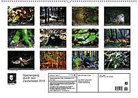 Spaziergang durch den Zauberwald (Wandkalender 2018 DIN A2 quer) - Produktdetailbild 13