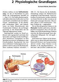Spezialwissen Dialyse und Diabetes - Produktdetailbild 3